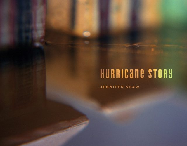 Hurricane Story Cover - Chin Music Press